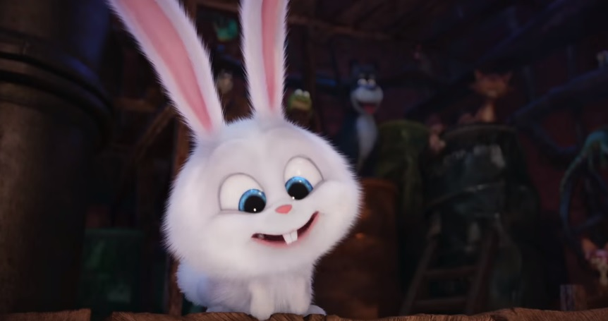 Cuteness Images Bunny Wallpaper And Background Photos
