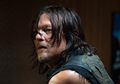 6x11 ~ Knots Untie ~ Daryl - the-walking-dead photo