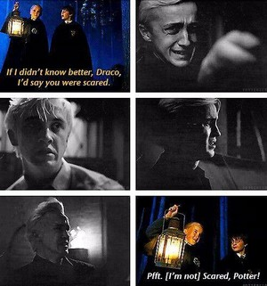 Draco And The Sorting Hat