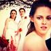 Edward and Bella <3 - edward-cullen icon