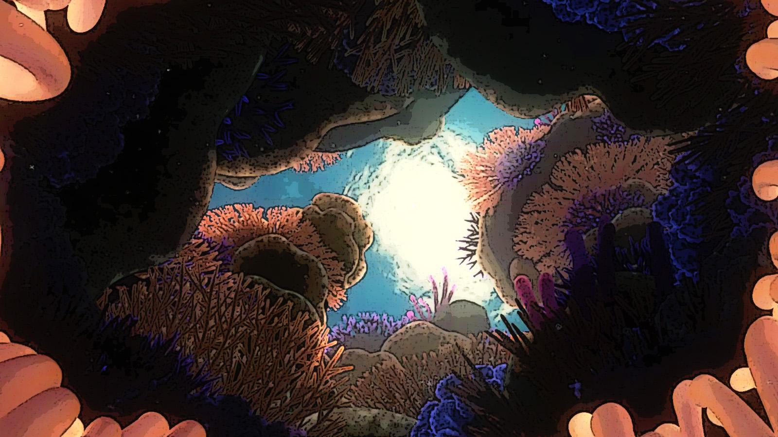 Finding Nemo karatasi la kupamba ukuta