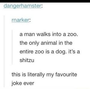 chistes graciosos