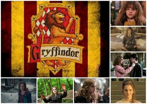 Hermione Granger Years 1-7