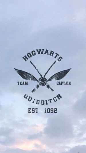Hog warts Quiditch Phone wallpaper