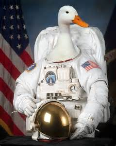 "I looked up ""space duck"" and I was not dissappointed."