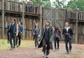 6x11 ~ Knots Untie ~ Jesus, Michonne, Daryl, Glenn, Rick & Maggie - the-walking-dead photo