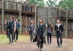 6x11 ~ Knots Untie ~ Jesus, Michonne, Daryl, Glenn, Rick & Maggie