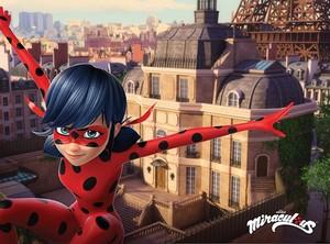 Miraculous Ladybug planner プレビュー 写真