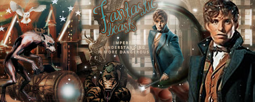 Fantastic Beasts and Where to Find Them fondo de pantalla titled Newt Scamander fan Art