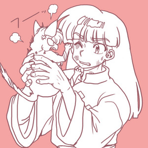 Ranma 1/2 мусс and Shampoo in her cursed form