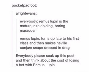 Remus Lupin Everyone