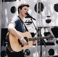 Shawn Mendes At کنسرٹ