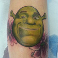 Shrek - shrek photo