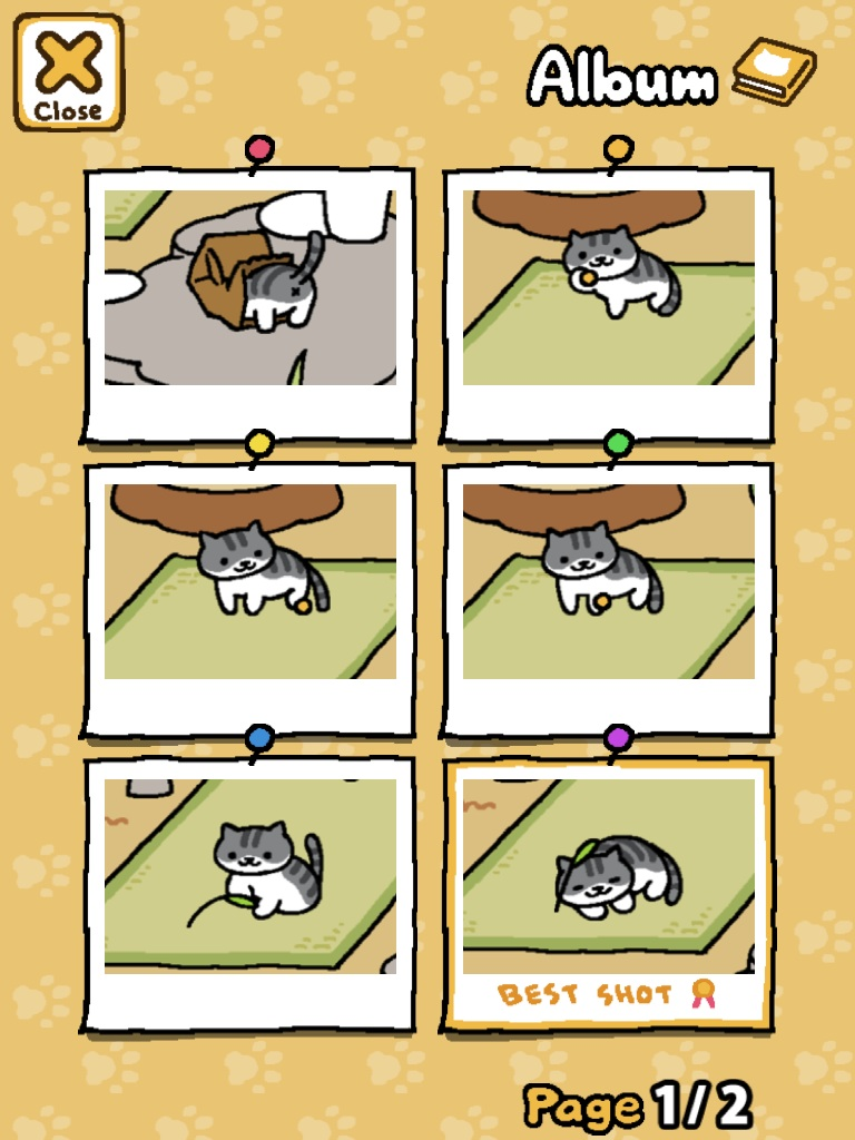 Neko Atsume Images So Many Cats Hd Wallpaper And Background Photos