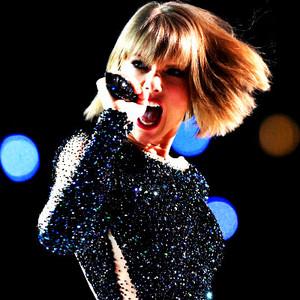 Taylor người hâm mộ Art
