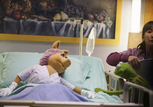 "The Muppets - ""Generally Inhospitable"""