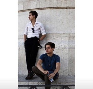 The Sprouse Brothers