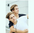 The Sprouse Brothers - the-sprouse-brothers photo