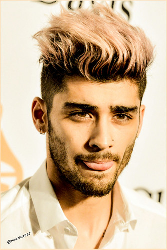 Zayn Malik wallpaper probably with a portrait called Zayn Malik 2016