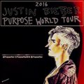 justin bieber,Purpose World Tour,2016 - justin-bieber photo
