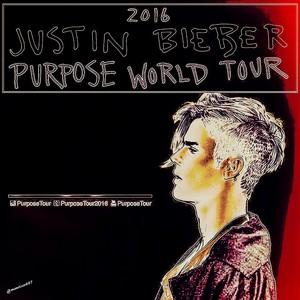 justin bieber,Purpose World Tour,2016