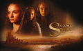 sansastark - tv-female-characters wallpaper