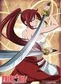 fairy tail  Erza Scarlet - anime photo