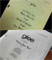 1 YEAR WITHOUT GLEE | FIRST AND LAST SCRIPT - glee photo