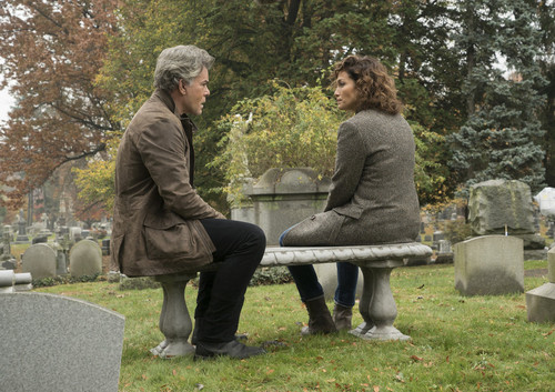 Shades of Blue wallpaper containing a park bench called 1x13 - One Last Lie - Wozniak and Harlee