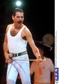 4134182210fb470a3dc8d976a56d9a87 - freddie-mercury photo