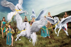 A Sexy Warrior Princess and the other Amazons tames a Beautiful Herd of Wild Pegasus