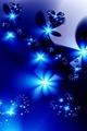Blue - blue photo