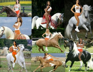Cute Girls from Hooters riding on Beautiful caballos