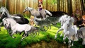 Cute Wolfriders and their Wolves team up to capture Beautiful Wild Horses - elfquest fan art