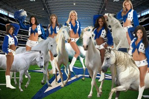 Dallas Cowboys Cheerleaders perform on the backs of their Beautiful White Steeds