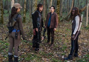 6x15 ~ East ~ Daryl, Michonne, Glenn & Rosita