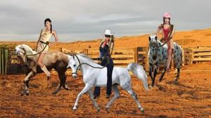 Desert Rose and Graceful Roadrunner teaching The Lone Rider to ride bareback