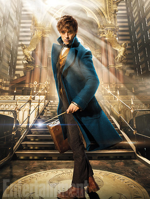 Eddie Remayne as Newt Scamander - Fantastic Beasts and Where To Find Them Poster