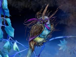 fantaisie Owl