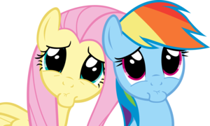 Fluttershy and regenboog Dash making begging faces