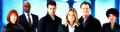 Fringe Cast - profil Banner