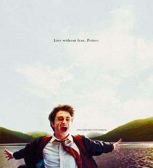 HP edits
