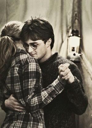 harry dan hermione