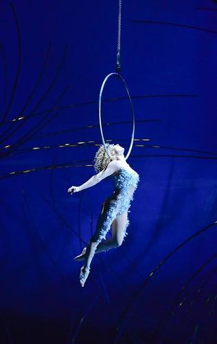 Cirque du Soleil karatasi la kupamba ukuta called Hoop act