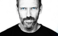 House MD Wallpaper - house-md photo
