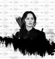 Katniss - the-hunger-games fan art