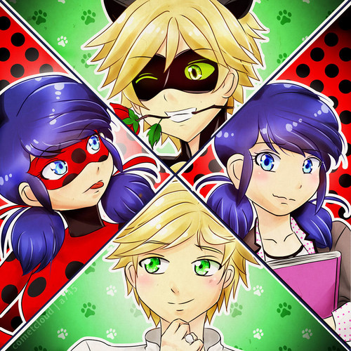 Miraculous Ladybug वॉलपेपर with ऐनीमे titled Ladybug and Chat Noir - Marinette and Adrien