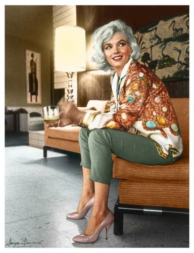 Marilyn Monroe wallpaper possibly containing a park bench, a family room, and a drawing room called Marilyn 1962 at Tim Liemert's home wearing Pucci and Ferragamo Heels