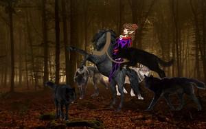 Moonshade and her Serigala had tamed an Beautiful Wild Black Horse