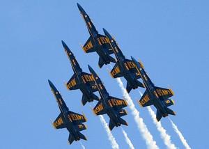 Navy Blue 天使
